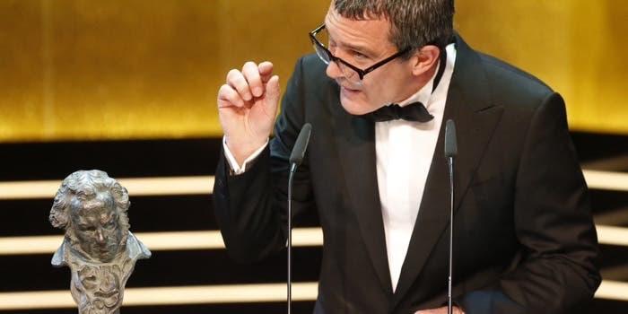 Goya Honorífico 2015